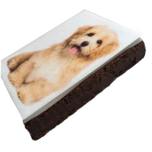 Brownie Sckoko mit Foto 9 x 13 cm